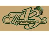 Логотип 13 год, рекламно-полиграфическая компания