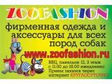 Логотип ZooFashion - одежда для собак всех пород