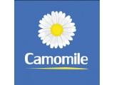 Логотип Camomile-Салон Цветов и Подарков