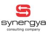 """Логотип Консалтинговая компания """"SYNERGYA"""""""