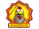 Логотип ДелаемСайт.РФ - Создание и продвижение сайтов