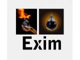 Логотип Эксим, ООО