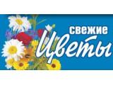 Логотип Цветы России, ООО