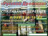 Логотип «Русский Дровосек»