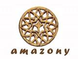 Логотип Амазони, ООО