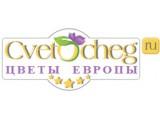 Логотип Цветы Европы, ООО