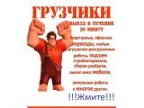 Логотип ГРУЗОНОСКИН