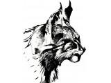 Логотип Линкс-АП, ООО