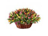 Логотип Magic Roses бесплатная доставка цветов.