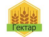 Логотип Гектар ООО