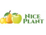 Логотип Питомник саженцев Хорошие Растения
