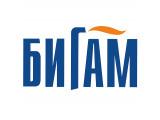 Логотип Бигам